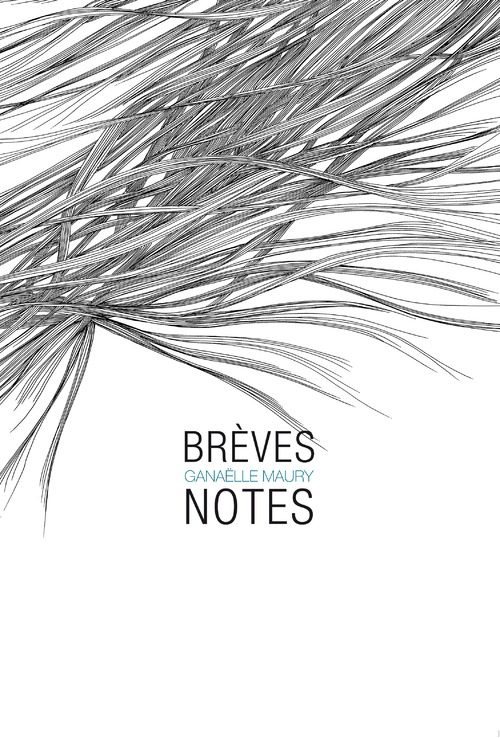 Promo-breves_notes-Maury-COUV
